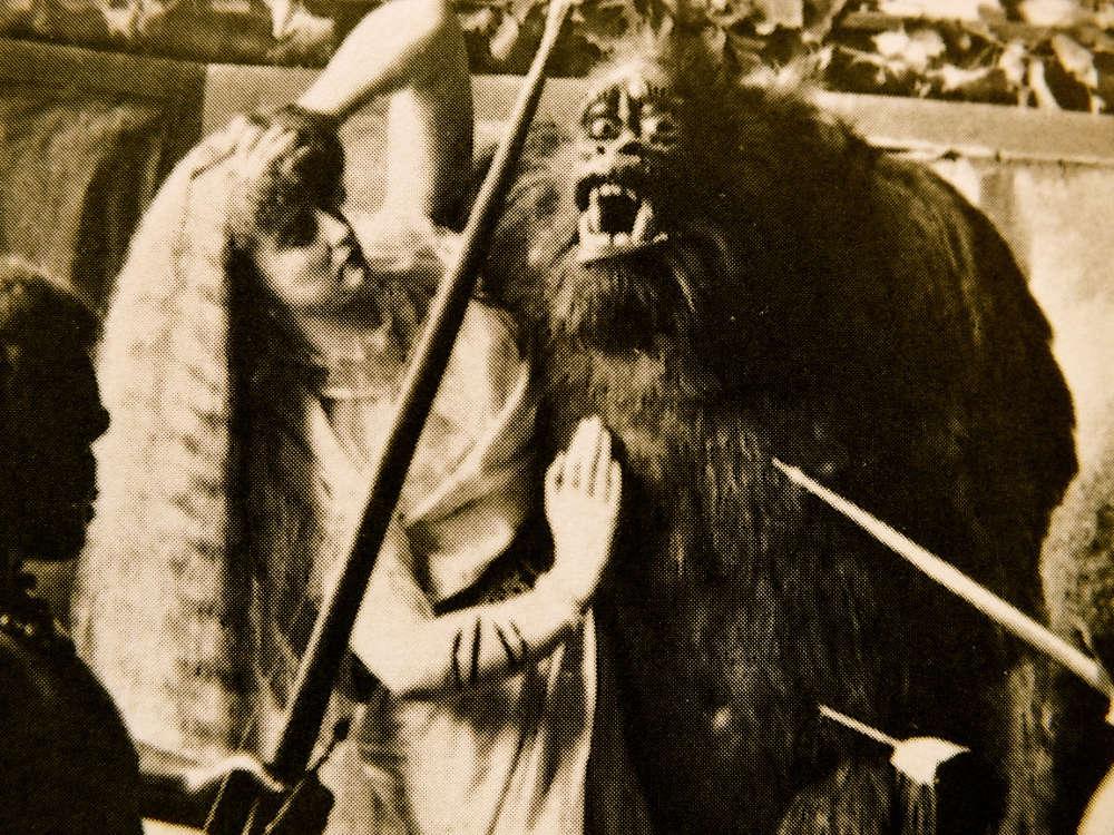 Lola Montez & King Kong
